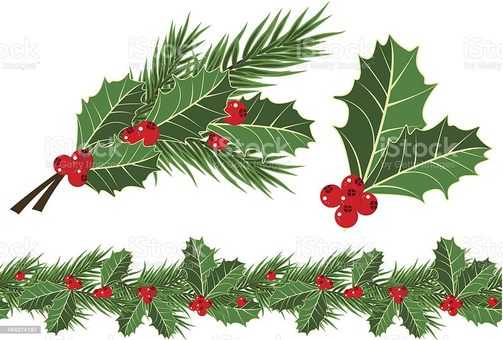 holly leaves and berries vector art illustration