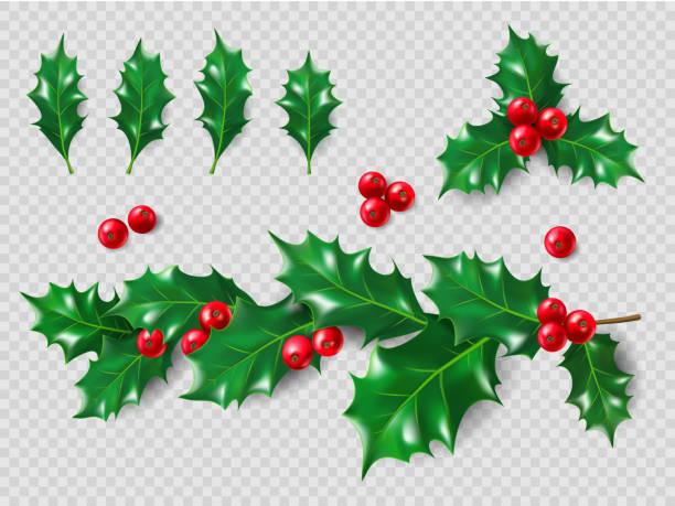zestaw holly. realistyczne liście, gałąź, czerwone jagody. ozdoby świąteczne i noworoczne. ilustracja 3d dla projektu układu - gałązka stock illustrations