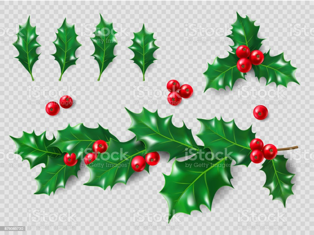 Holly Set. Realistic leaves, branch, red berries. Christmas and New Year decorations. 3d illustration for your layout design vector art illustration