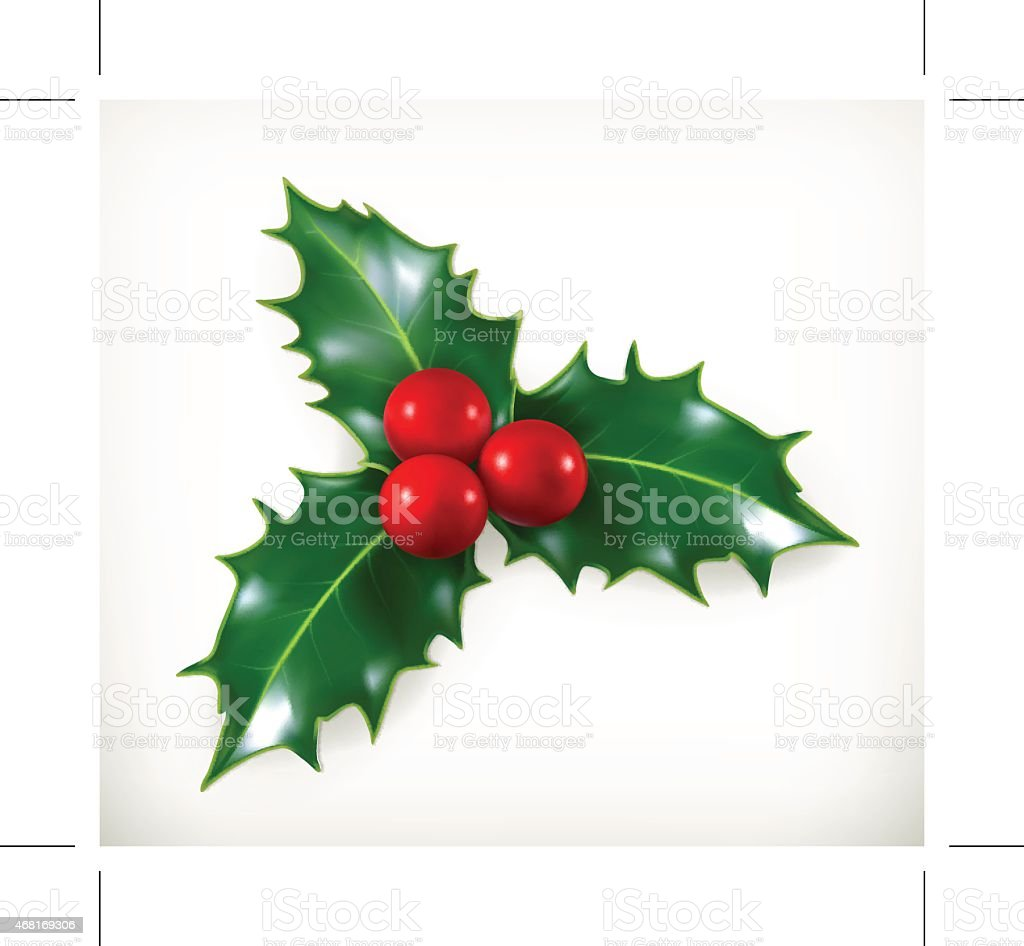 Holly, traditional Christmas decoration, vector icon vector art illustration