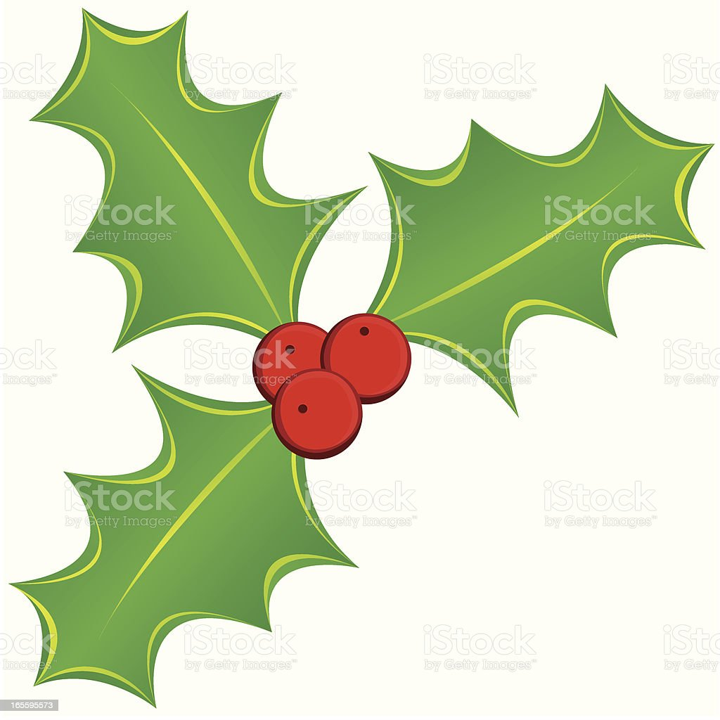 Holly ilustração de holly e mais banco de imagens de azevinho royalty-free