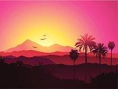 Landscape of the Hollywood mountain range.