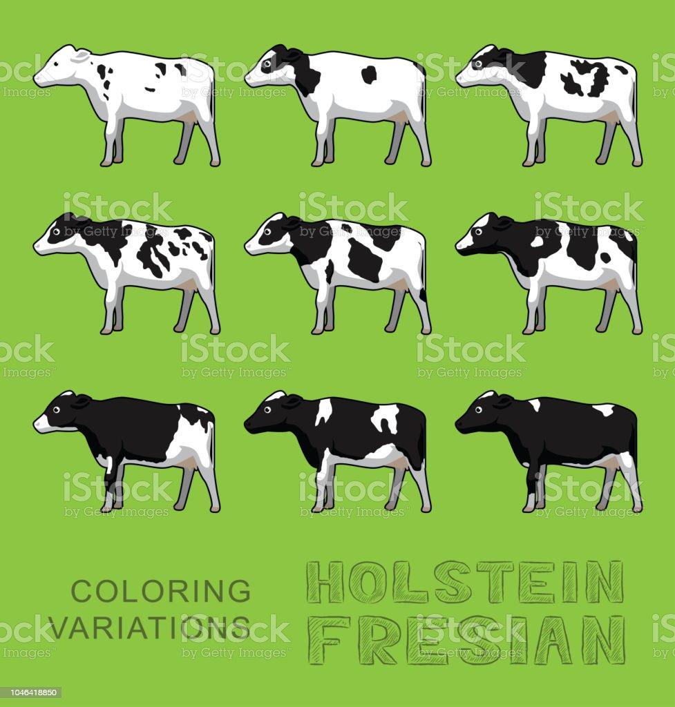 Holstein Fresian Inek Boyama Varyasyonları Illüstrasyon Vektör Stok