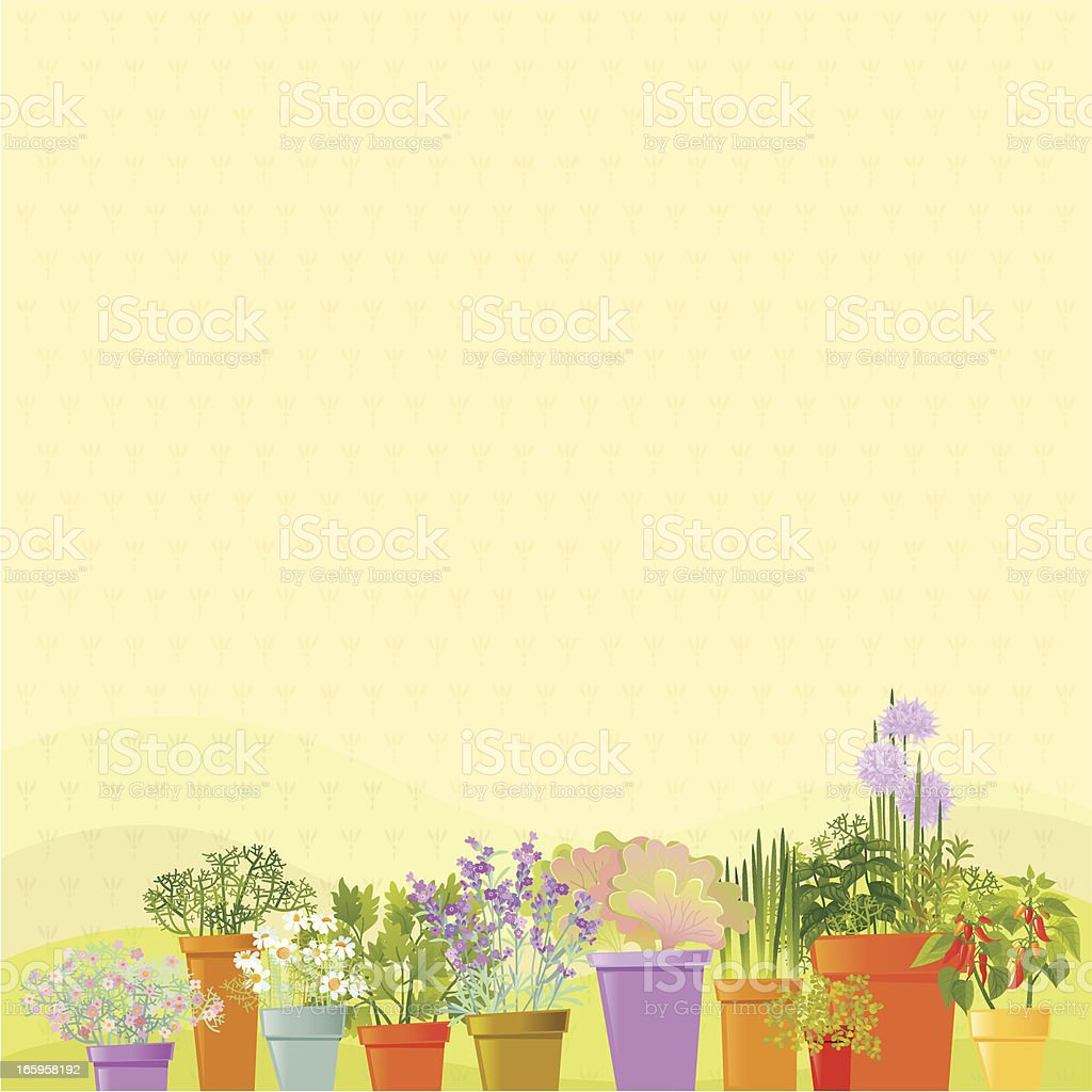 Home Garden Background vector art illustration