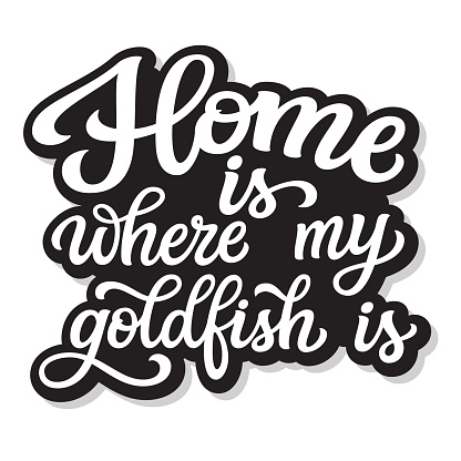 Home is where my goldfish is
