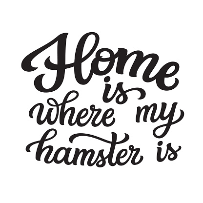 Home is where my hamster is