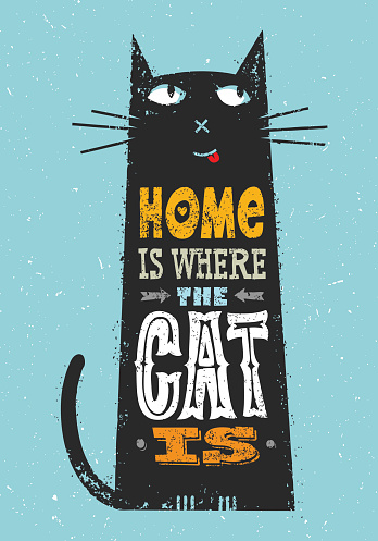 Home Is Where The Cat Is. Whimsical Quote Concept