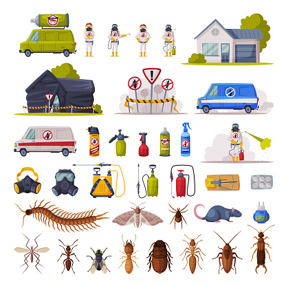 Home Pest Control Service Set, Exterminating and Protecting Equipment, Harmful Insects Vector Illustration