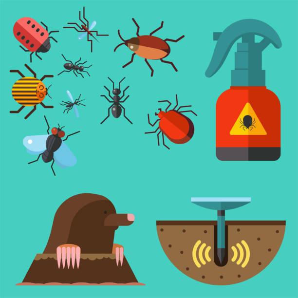 hause schädling insekten kontrolle experte ungeziefer kammerjäger service schädlingsbekämpfung insekt thripse ausrüstung flache symbole vektorgrafik - mückenfalle stock-grafiken, -clipart, -cartoons und -symbole