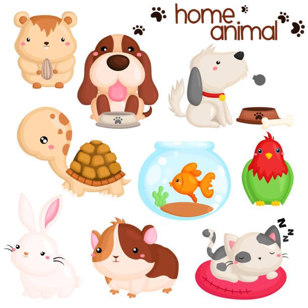 home haustier vektor set - hamsterhaus stock-grafiken, -clipart, -cartoons und -symbole