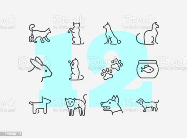 Home pets line icon set vector id1166636123?b=1&k=6&m=1166636123&s=612x612&h=xxfdhhp vzwblkd jpfxz7hmzgcfakbd1xd20rbjbpg=
