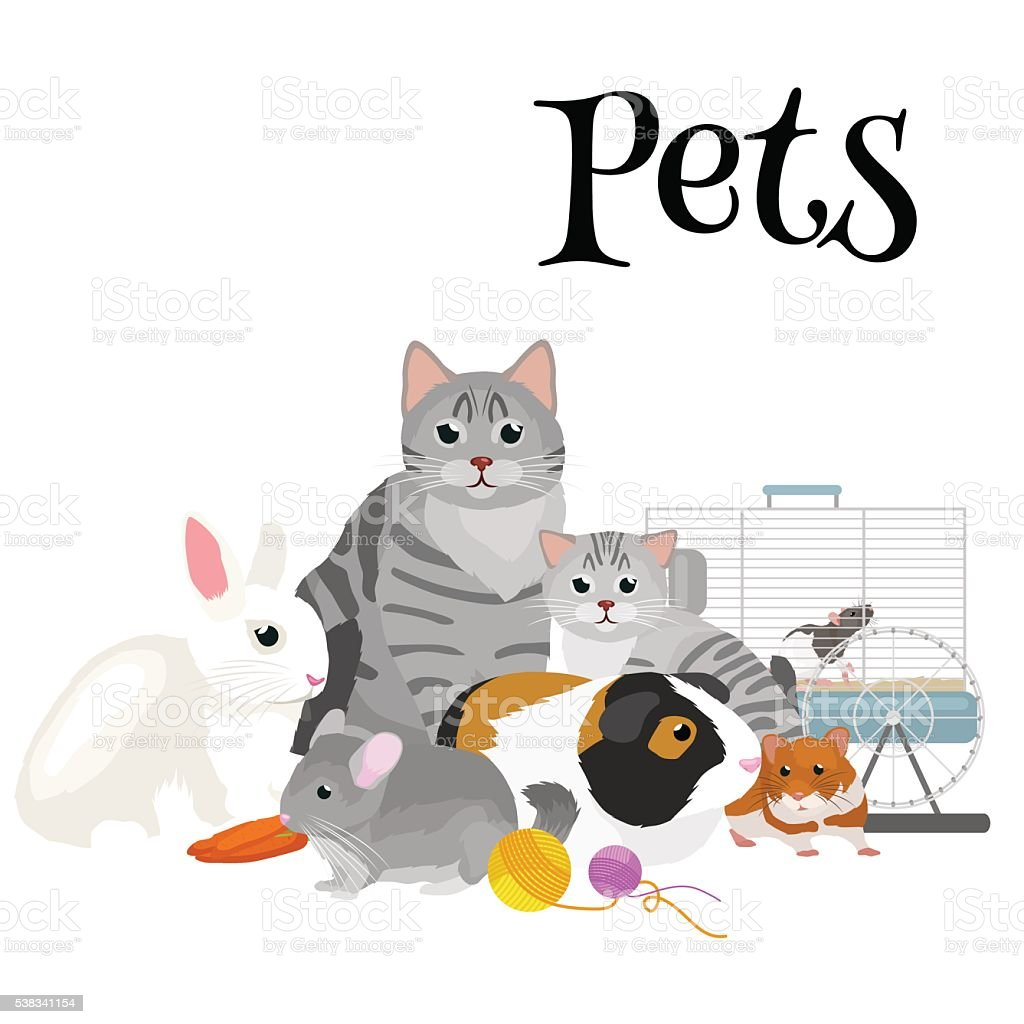 Home Pets Set Cat Dog Parrot Goldfish Hamster Domesticated Animals Stock Illustration Download Image Now Istock
