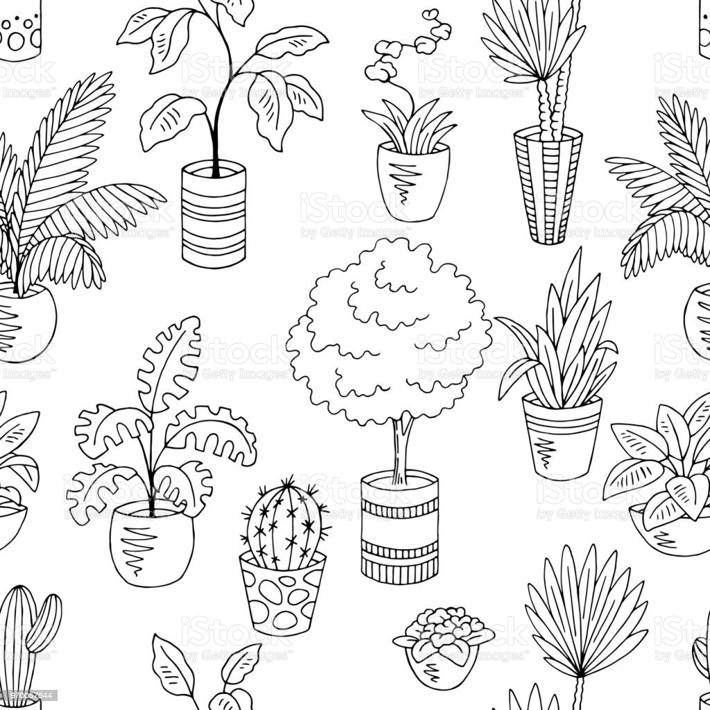 Home Plants Flower Graphic Black White Seamless Pattern Background