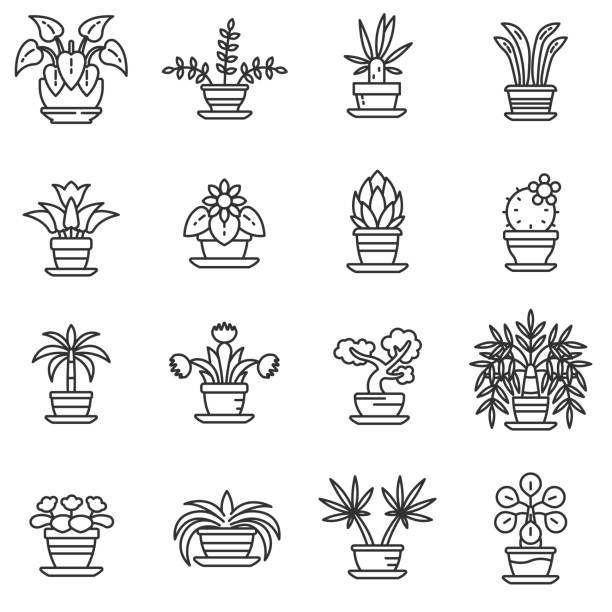 home plants icons set. Editable stroke home plants icons set. Flower in a pot, thin line design. Home garden, linear symbols collection. isolated vector illustration. potted plant stock illustrations