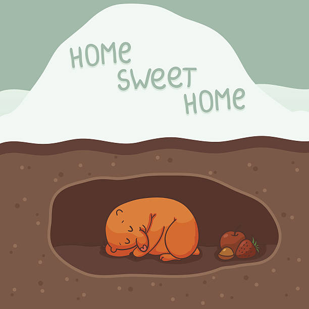 home, sweet home - hibernation stock illustrations, clip art, cartoons, & icons