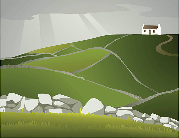 Homescapes - Ireland A single Irish cottage sits atop a hillside criss-crossed with rock walls. AI CS2, EPS, and JPG included. cottage stock illustrations