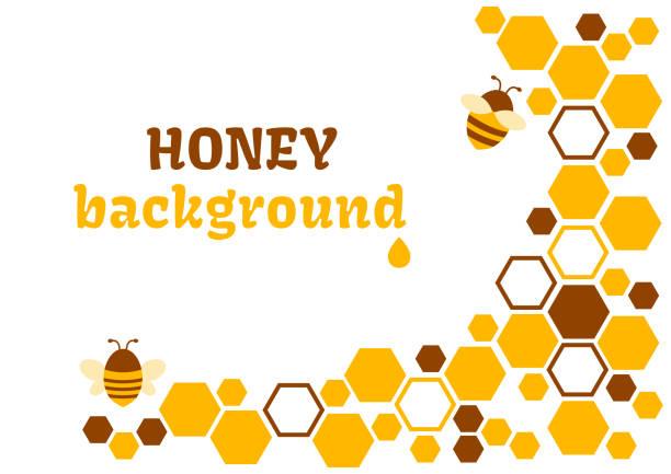 illustrazioni stock, clip art, cartoni animati e icone di tendenza di honey abstract background with honeycomb and bee. vector illustration - favo