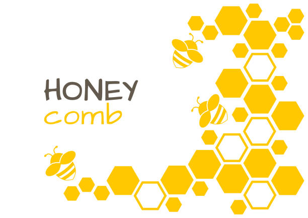Honey abstract background with honeycomb and bee. Vector illustration Honey abstract background with honeycomb and bee. Vector illustration beehive stock illustrations