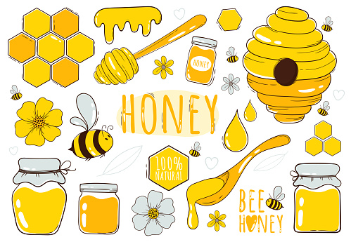 Honey and beekeeping collection