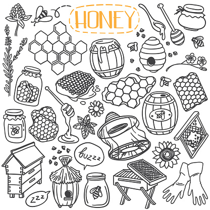 Honey and beekeeping doodles set.
