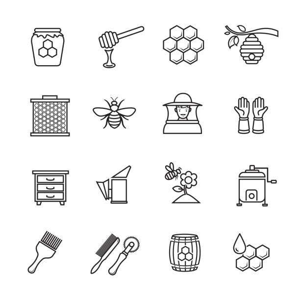 Honey and beekeeping icons Honey and beekeeping thin line icons, Set of 16 editable filled, Simple clearly defined shapes in one color. bee borders stock illustrations