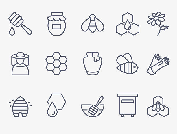 Honey and beekeeping icons Set of 15 honey and beekeeping icons beehive stock illustrations