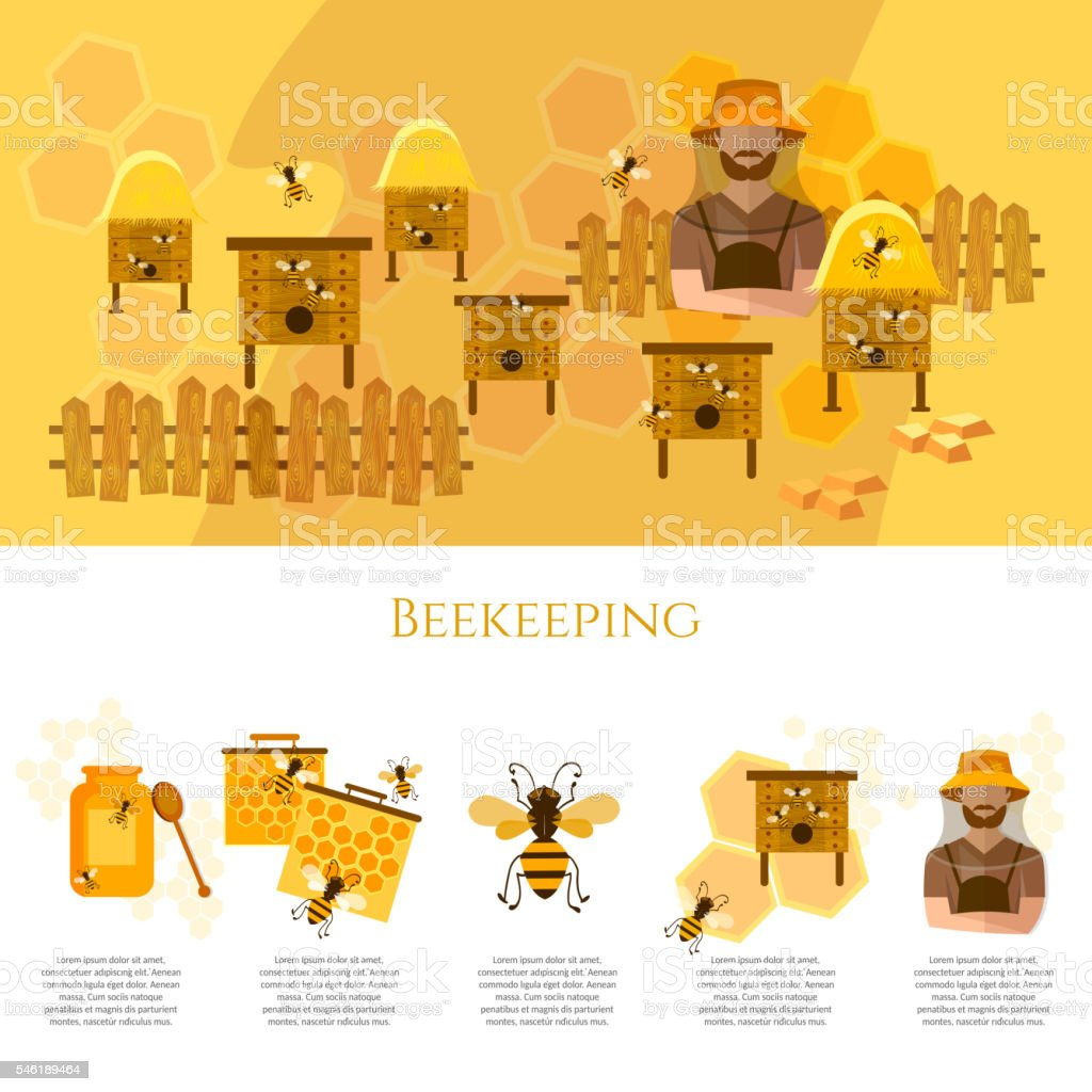 Honey and beekeeping infographics beekeeper on apiary - Illustration vectorielle