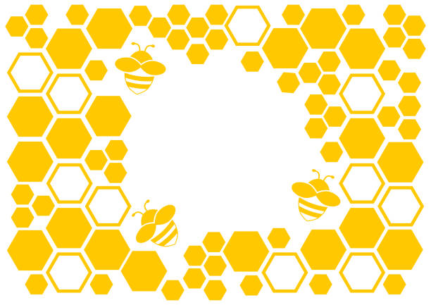 illustrazioni stock, clip art, cartoni animati e icone di tendenza di honey background, yellow frame with honeycomb and bee. vector illustration - impollinazione