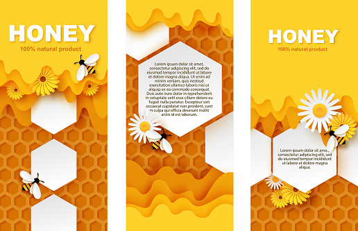 Honey banner vector template set. Paper cut honeycombs with flowing sweet honey, cute bees collecting nectar.