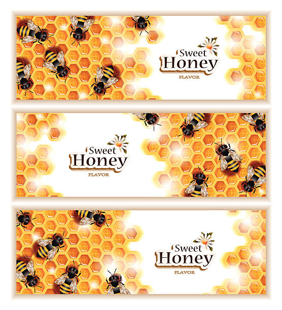 Honey Banners with Working Bees Vector set of three elegant honey banners with bees working on honeycombs. File includes high resolution JPEG. swarm of insects stock illustrations
