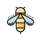 Honey bee, colorful thin line flat style icon