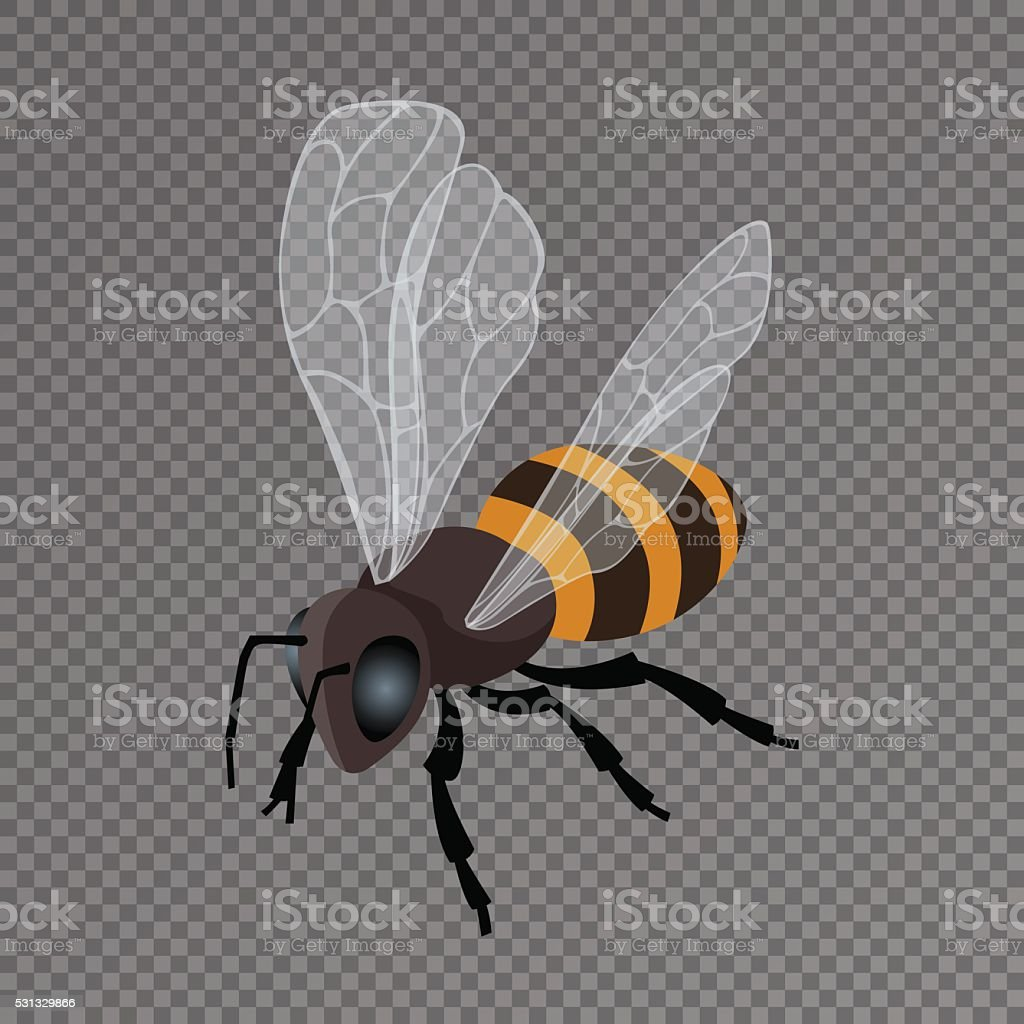 Honey Bee Vector Icon On A Transparent Background Royalty Free