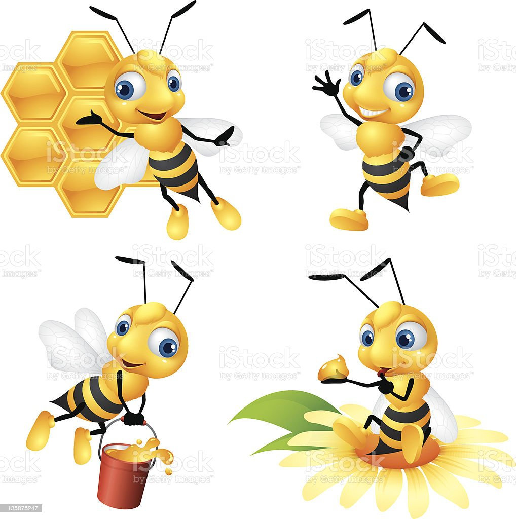 Honey Bee vector art illustration