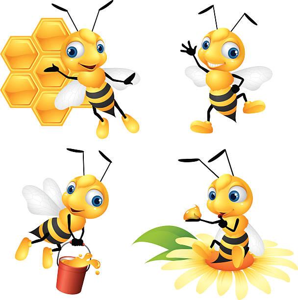 ilustrações, clipart, desenhos animados e ícones de abelha melífera - bee