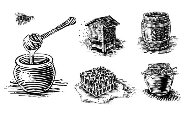 Honey, beehives and pots of honey. Honey, beehives and pots of honey. Set of vector images. bee clipart stock illustrations