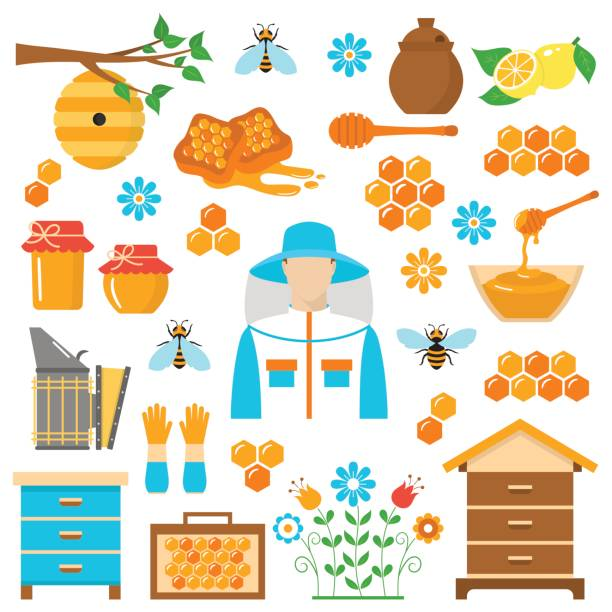 Honey beekeeping vector flat icons set Beekeeping honey vector flat icons set with apiculture equipment, beekeeper, smoker, beehive, bee, honeycomb, jar and dipper stick isolated on white background. beehive stock illustrations
