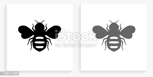 Honey Bees Black and White Square Icon. This 100% royalty free vector illustration is featuring the square button with a drop shadow and the main icon is depicted in black and in grey for a roll-over effect.