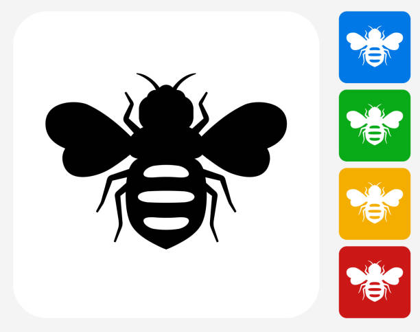 Honey Bees Icon Flat Graphic Design Honey Bees Icon. This 100% royalty free vector illustration features the main icon pictured in black inside a white square. The alternative color options in blue, green, yellow and red are on the right of the icon and are arranged in a vertical column. queen bee stock illustrations