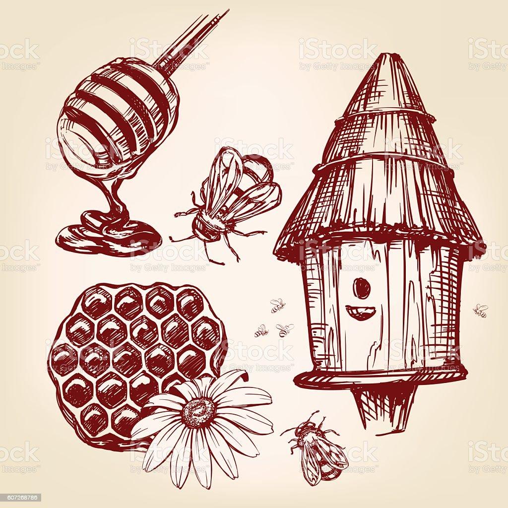 honey elements set hand drawn vector llustration sketch vector art illustration
