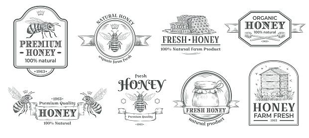 Honey farm badge. Beekeeping logo, retro bee badges and vintage hand drawn mead label vector illustration set