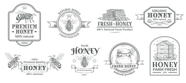 illustrazioni stock, clip art, cartoni animati e icone di tendenza di honey farm badge. beekeeping logo, retro bee badges and vintage hand drawn mead label vector illustration set - miele dolci