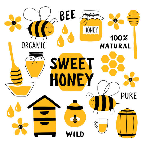 Honey funny doodle set. Beekeeping, apiculture: bee, hive, spoon, honeycomb, jar, pot. Hand drawn vector illustration. Cute cartoon organic food collection, isolated on white. Sweet honey title. Honey funny doodle set. Beekeeping, apiculture: bee, hive, spoon, honeycomb, jar, pot. Hand drawn vector illustration. Cute cartoon organic food collection, isolated on white. Sweet honey title. beekeeper stock illustrations