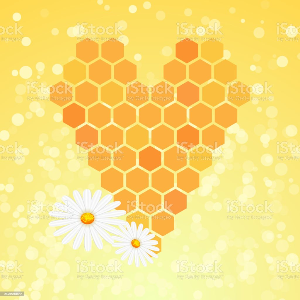 Honey heart. Sweet food background with chamomile flowers. Honeycomb vector art illustration