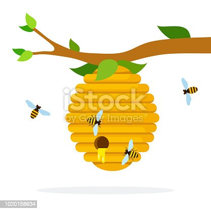 Honey hive with bees hanging on a branch flat isolated