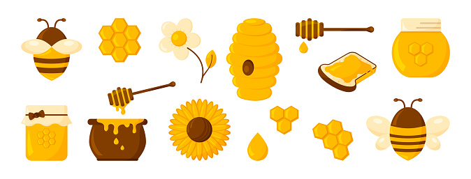Honey icon set, honeycomb, bee, hive, hexagon, jar, pot, drop, syrup toast and flowers. Organic food design concept isolated on white background. Vector