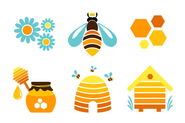 Honey icons. Vector design elements. Queen bee, honeycomb, hive, flowers and honey jar. Honey icons. Vector design elements. Queen bee, honeycomb, hive, flowers and honey jar. queen bee stock illustrations