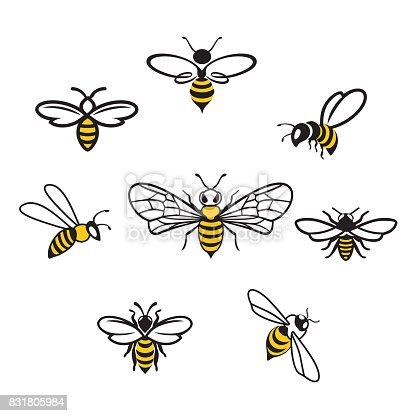 Honey bee set. Vector. Set of honey and bee labels for honey products. Isolated insect icon. Flying bee. Flat style vector illustration.
