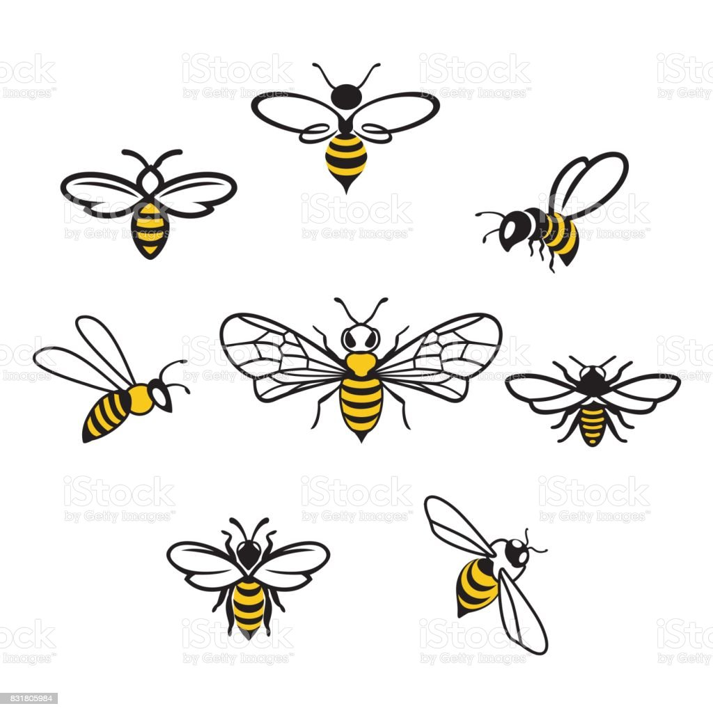 Honey Icons3 vector art illustration