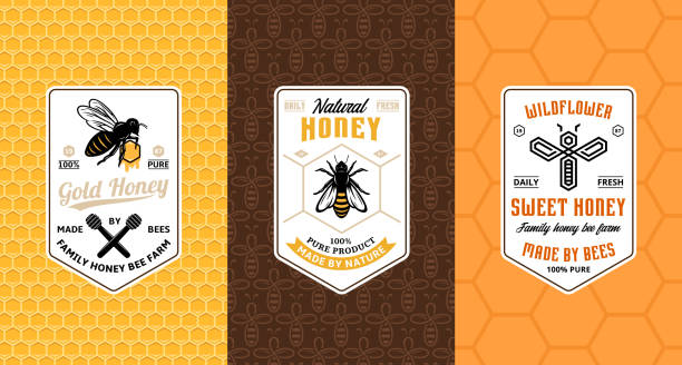 Honey labels, cards and packaging design Honey labels, cards and packaging design templates for apiary and beekeeping  products, branding and identity. Vector honey illustration and patterns. beekeeper stock illustrations