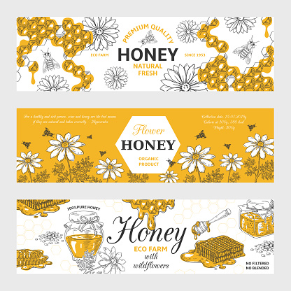 Honey Labels Honeycomb And Bees Vintage Sketch Background Hand Drawn Organic Food Retro Design Vector Honey Graphic Banners - Immagini vettoriali stock e altre immagini di Albero